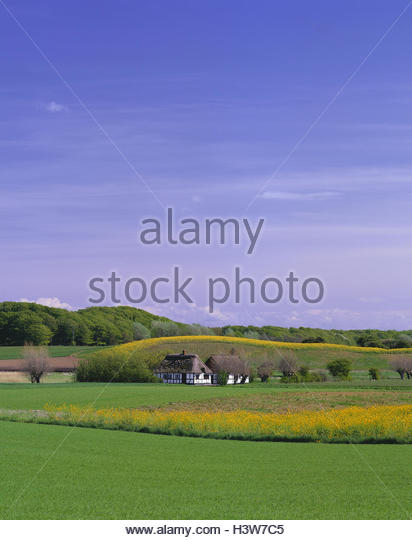 Denmark Hill Stock Photos Denmark Hill Stock Images Alamy