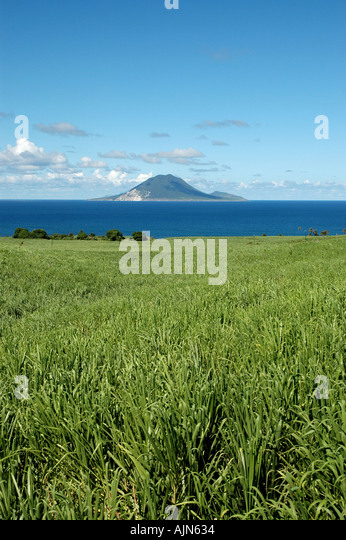 St Kitts Caribbean West Indies Sugar cane field St Eustatius in background - Stock Image
