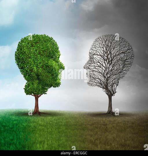 Human mood and emotion disorder concept as a tree shaped as two human faces with one half full of leaves and the - Stock Image