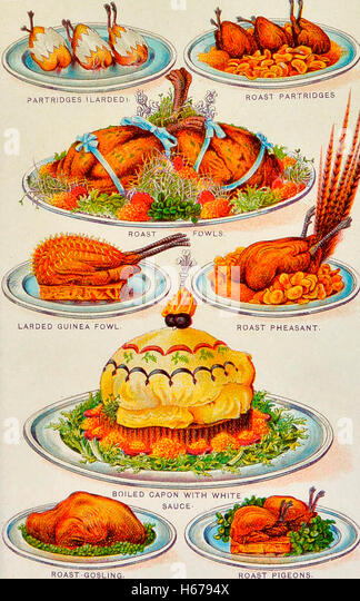 Illustrations of various poultry in a cook book, circa 1900 - Stock Image