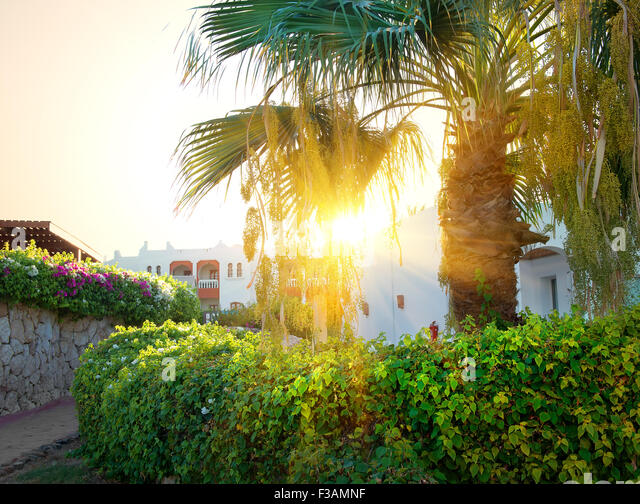 Bright sunrise over resort hotel in Egypt - Stock-Bilder