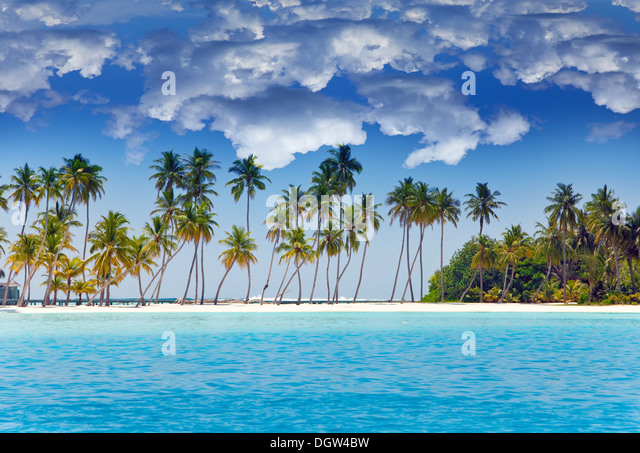 The island with palm trees in the ocean - Stock Image