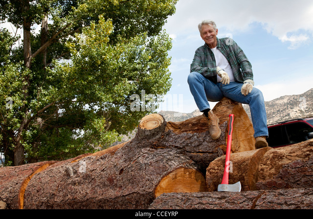 Low angle view of man sitting on a huge tree trunk - Stock Image