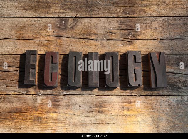 Wooden blocks spelling ecology - Stock Image