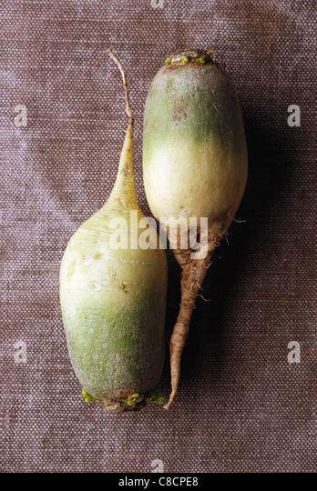Long turnips - Stock Image
