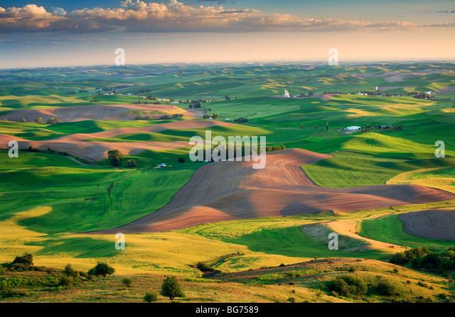 Farm fields surrounding Steptoe Butte in the eastern Washington Palouse area - Stock-Bilder