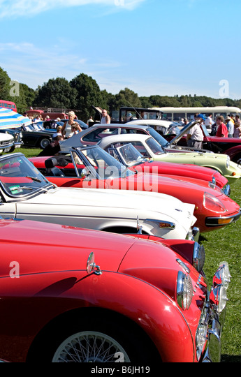 Cars On The Common Harpenden