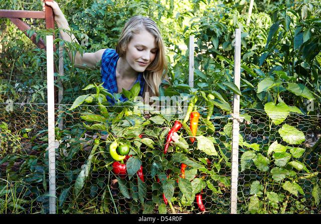 Teen gardening - Stock Image