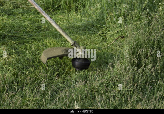 Weed trimmer stock photos weed trimmer stock images alamy for Sac bee fishing line