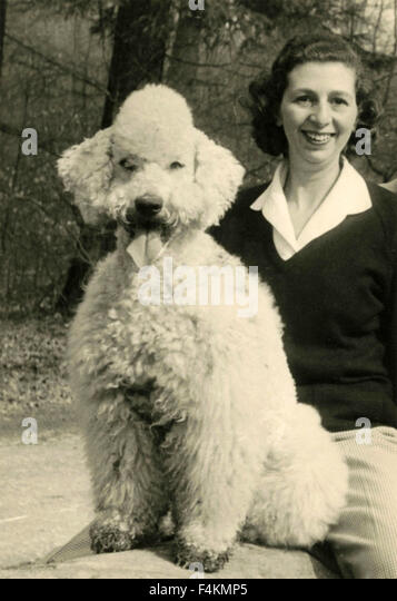 White Poodle Dog with mistress, Italy - Stock Image
