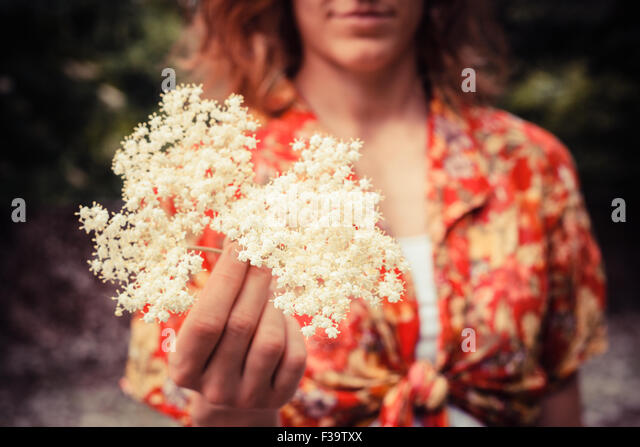 A young woman is holding a bunch of elderflowers she has been picking - Stock Image