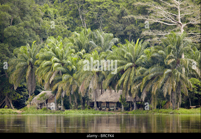 Village on the Sangha River, Republic of Congo, Africa - Stock-Bilder