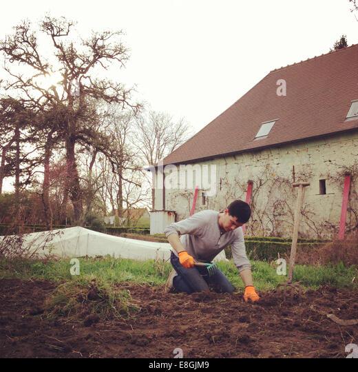 Man gardening - Stock Image