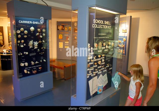 Sanibel Island Florida Sanibel Bailey-Matthews Shell Museum exhibit information girl mother collection display - Stock Image