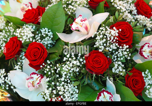 Orchids and roses - Stock Image