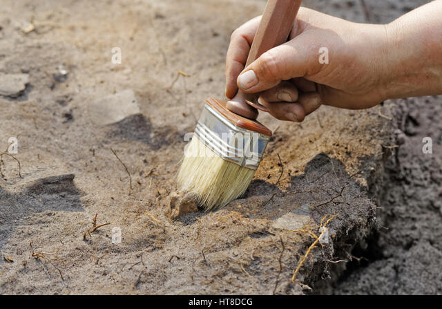 Archaeology: a thin layer stripping.One of the stages of excavation - Stock Image