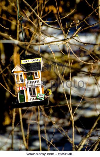 Funny birdfeeder, made like a tiny shop for birds. - Stock Image