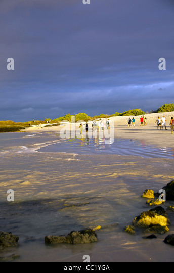 Tourists walking on Las Bachas Beach, Santa Cruz Island, Galapagos Islands, Ecuador - Stock Image