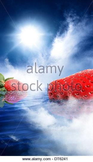 strawberry, dream, strawberries, dreams, unusual, fruit, odd, surrealism, water, bizarre, colorful, colourful, daydream, - Stock Image