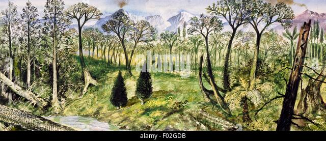 Forest of the Carboniferous Period. Drawing. - Stock Image