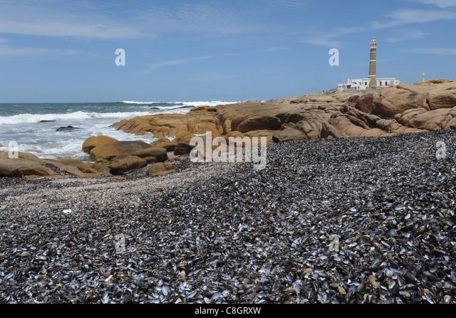 Uruguay, South America, Rocha, Cabo Polonio, coast, lighthouse, sea, - Stock Image