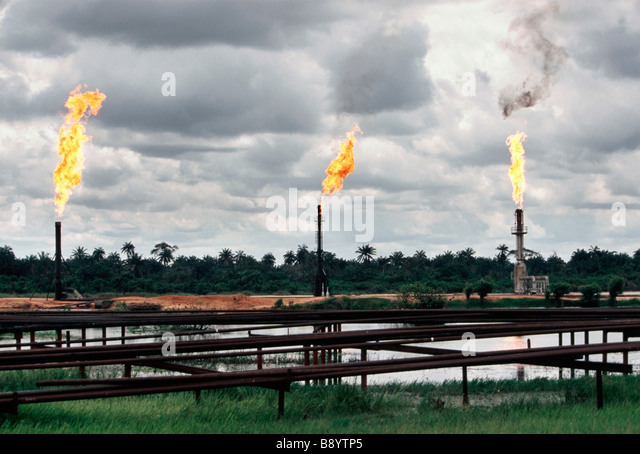 environmental pollution in nigeria pdf