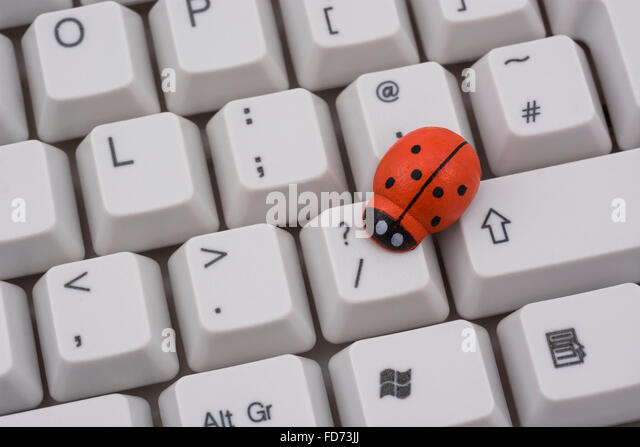 Ladybird / ladybug on PC keyboard - as a visual metaphor for the concept of 'computer bug' or viral / system - Stock Image