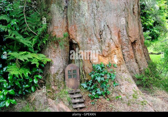 100+ Large Gnome Doors For Trees – yasminroohi