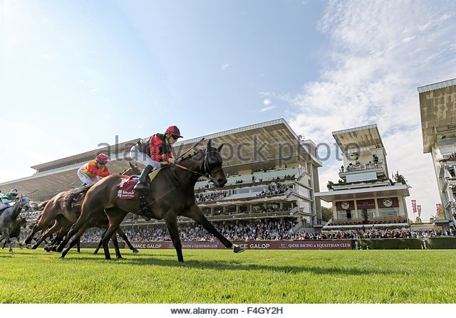 Paris, France. October 3rd, 2015. FRANCE, Paris: French jockey Vincent Cheminaud (C) is about to win Qatar Grand - Stock Image
