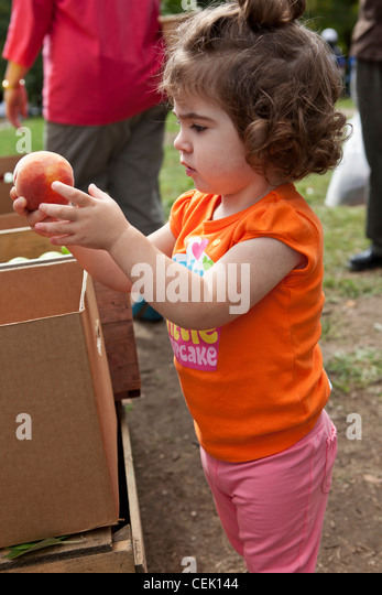 Agriculture - A little girl chooses a sweet peach at the Hope Street Farmers Market / Providence, Rhode Island, - Stock Image