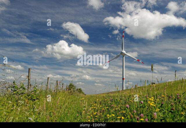 Germany, Ostfriesland, Wind turbine in meadow against cloudy sky - Stock Image