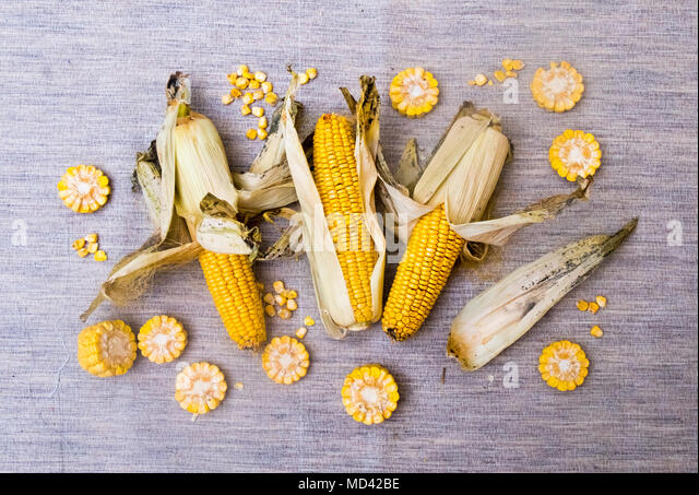 Corn on the cob with slices of corn, overhead view - Stock Image