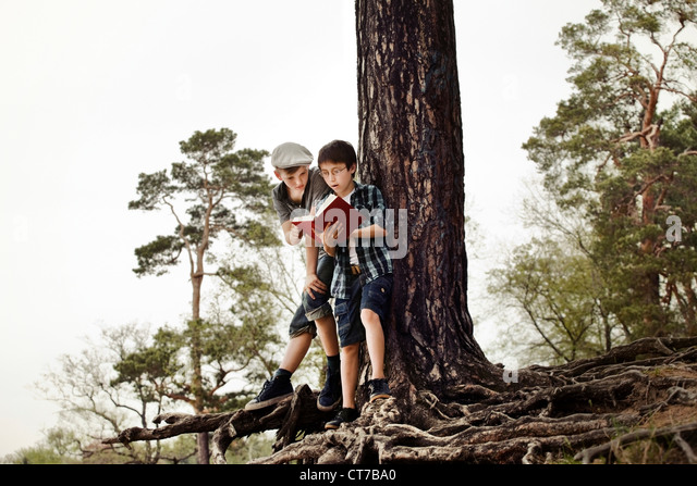 Boys reading book by tree trunk - Stock Image