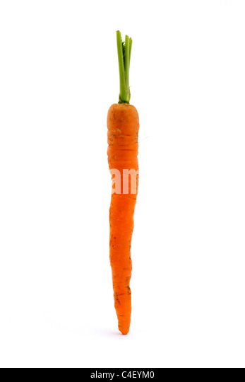 Single carrot isolated over white - Stock Image