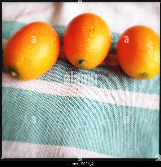 Kumquats - Stock Image