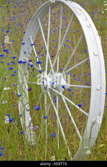 Decorative wheel in fence line The Palouse Washington - Stock Image