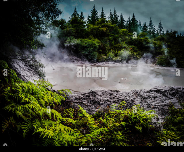 New Zealand - Stock Image