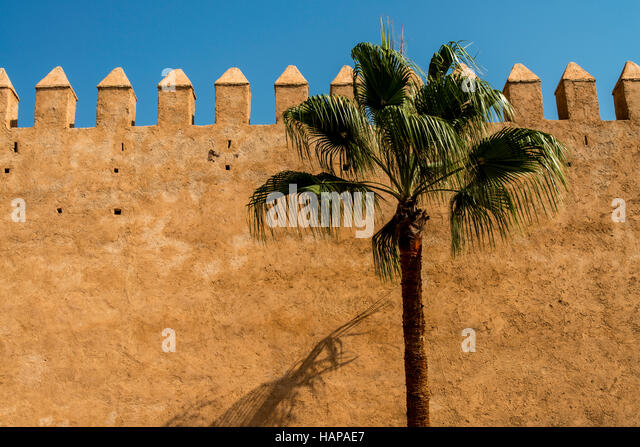 Simple graphic photo of the Medina wall in Rabat, near Casablanca, Morocco. With a palm tree and deep blue afternoon - Stock Image