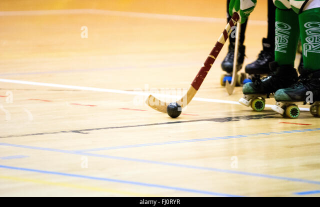 Gijon, Spain. 27th February, 2016. The ball during the roller hockey match of Spanish Women's OK League between - Stock Image