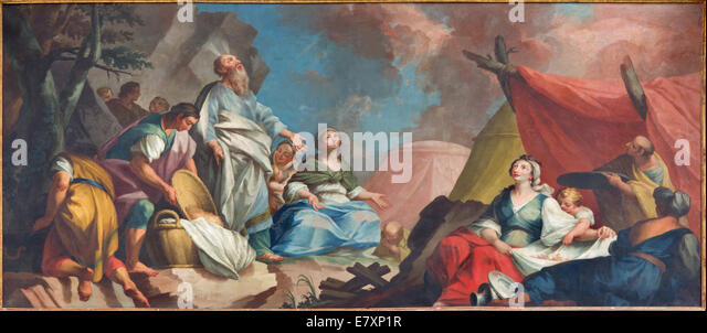 Padua - Paint of scene - Moses and the Israelites Gathering of Manna form 16. cent. by unknown painter  in Cathedral - Stock Image
