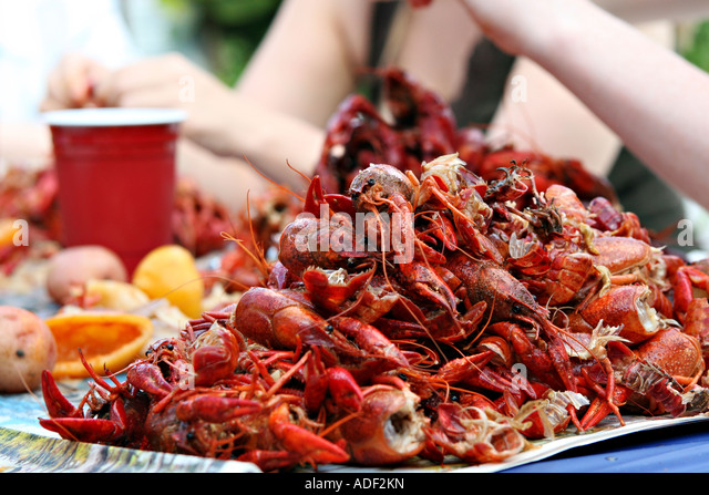 A pile of half eaten crawfish at a backyard crawfish boil - Stock Image