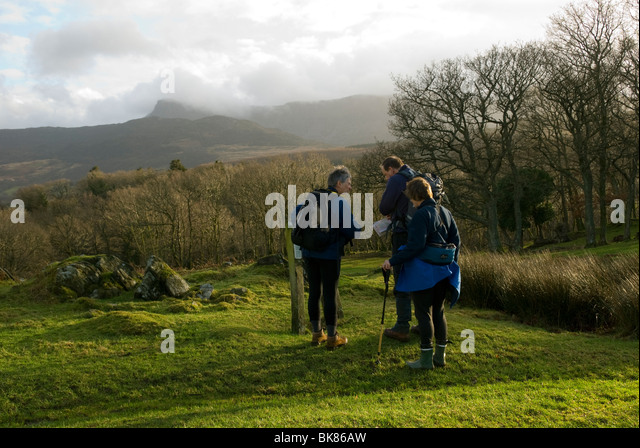 Three walkers study the map below Cadair Idris, near Dolgellau, Snowdonia, North Wales, UK - Stock Image