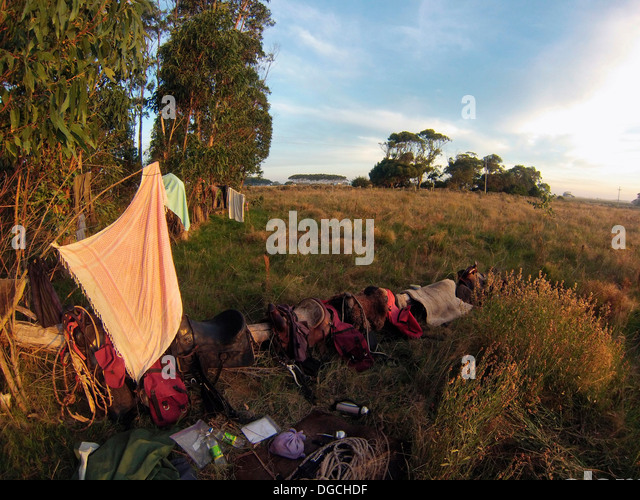 Camping equipment in field, Uruguay - Stock Image