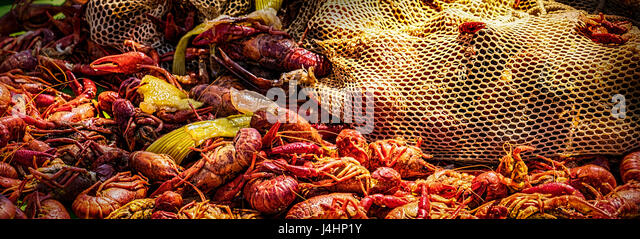 A New Orleans style crawfish boil. - Stock Image