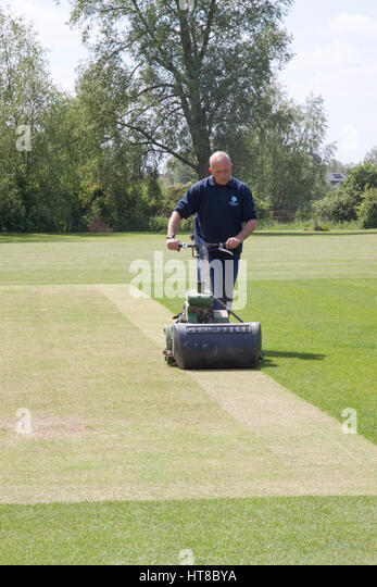 Groundsman maintains a cricket ground - Stock Image