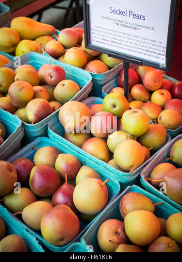 Punnets of seckel pears for sale at the City Market (104 Street Market) in Edmonton, Alberta, Canada. - Stock Image