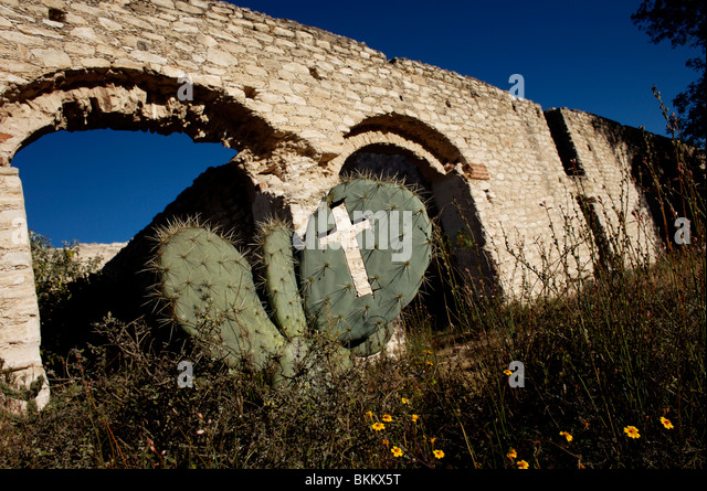A cross carved into a cactus at the ruins of the Hacienda de Cinco Señores at an abandoned mine in Mineral - Stock Image