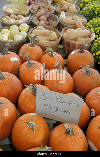 Nashville Tennessee Nashville Farmers' Market agriculture locally grown produce Fall harvest Autumn pumpkin - Stock Image
