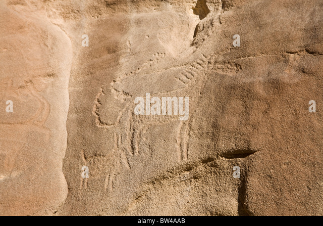Etched depiction of donkey and smaller animal possibly young on rock in the Eastern Desert of Egypt - Stock Image