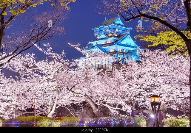 Osaka, Japan at Osaka, Castle with cherry blossoms. - Stock Image